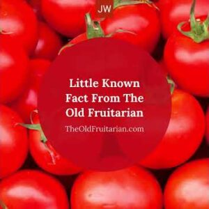 Is A Tomato A Fruit?